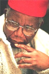Chinua Achebe Foundation