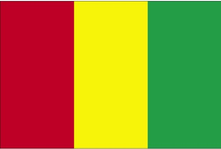 Flag of the Republic of Guinea