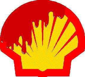 BNW Shell